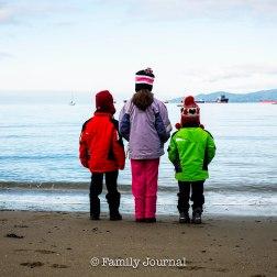 Family Journal-78